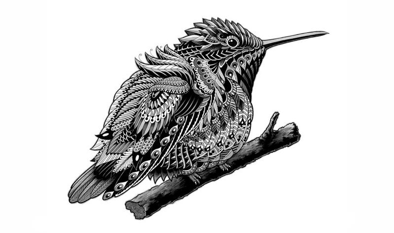 Ben Kwok细腻的插画作品欣赏,线描画